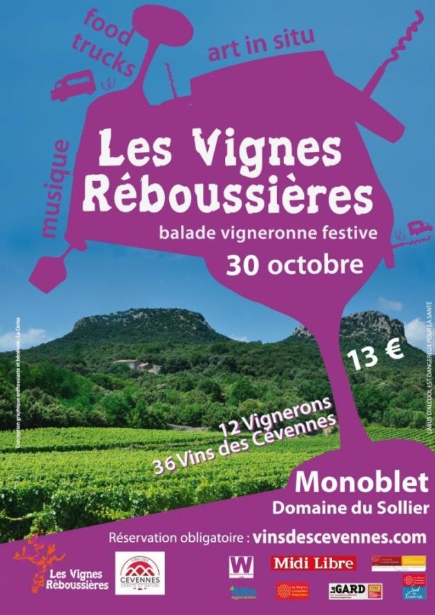 Les vignes reboussieres 2016 a monoblet au domaine le sollier 1476700153 39663